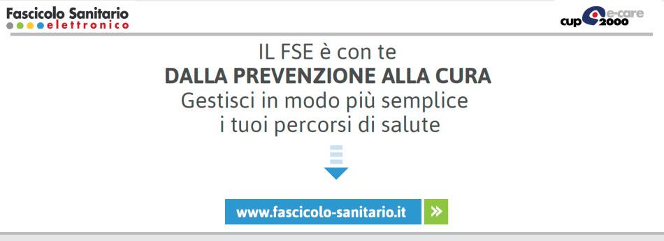 FSE_3